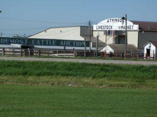 Atkinson Livestock Market
